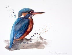 Kingfisher II by Sarah Stokes -  sized 23x18 inches. Available from Whitewall Galleries